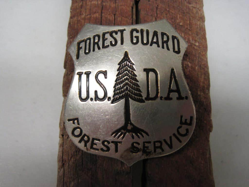 Gifford Pinchot commissioned nickel-plated bronze badges like this one for forest guards in the 1900s.