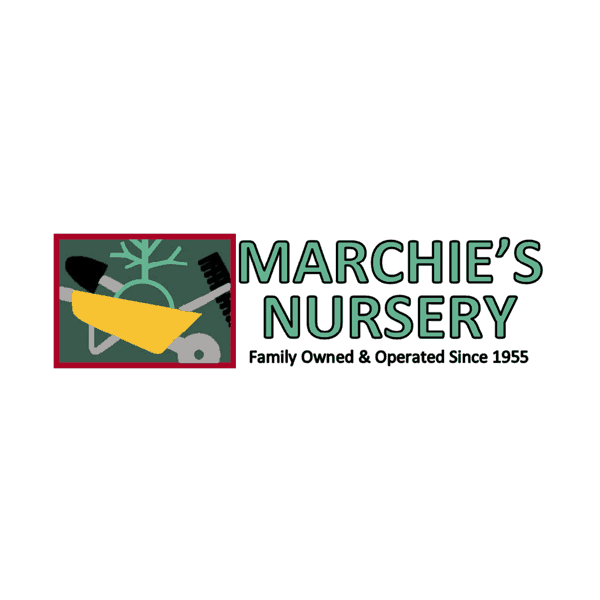 Marchie's Nursery